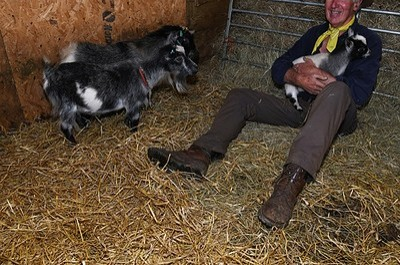 You've goat to be kidding... - Barnsley News from the Barnsley Chronicle