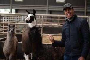 Main image for Ex-footballer meets llama namesake