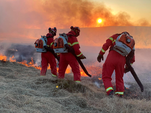 Main image for Cause of huge moorland blaze probed by police