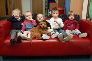 Main image for Kids get 'custody' of Rhubarb the dog