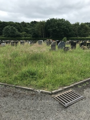 Main image for Cemetery's state shocks family