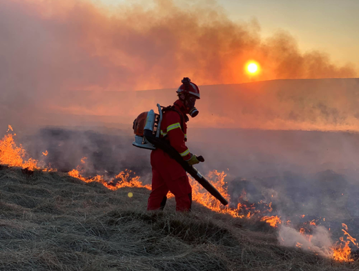 Main image for Soaring temperatures worry countryside rangers