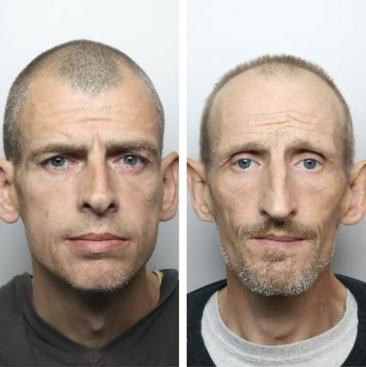 Main image for Brothers both given ten-year jail terms